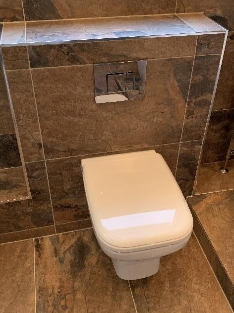 Toilet repair Colchester